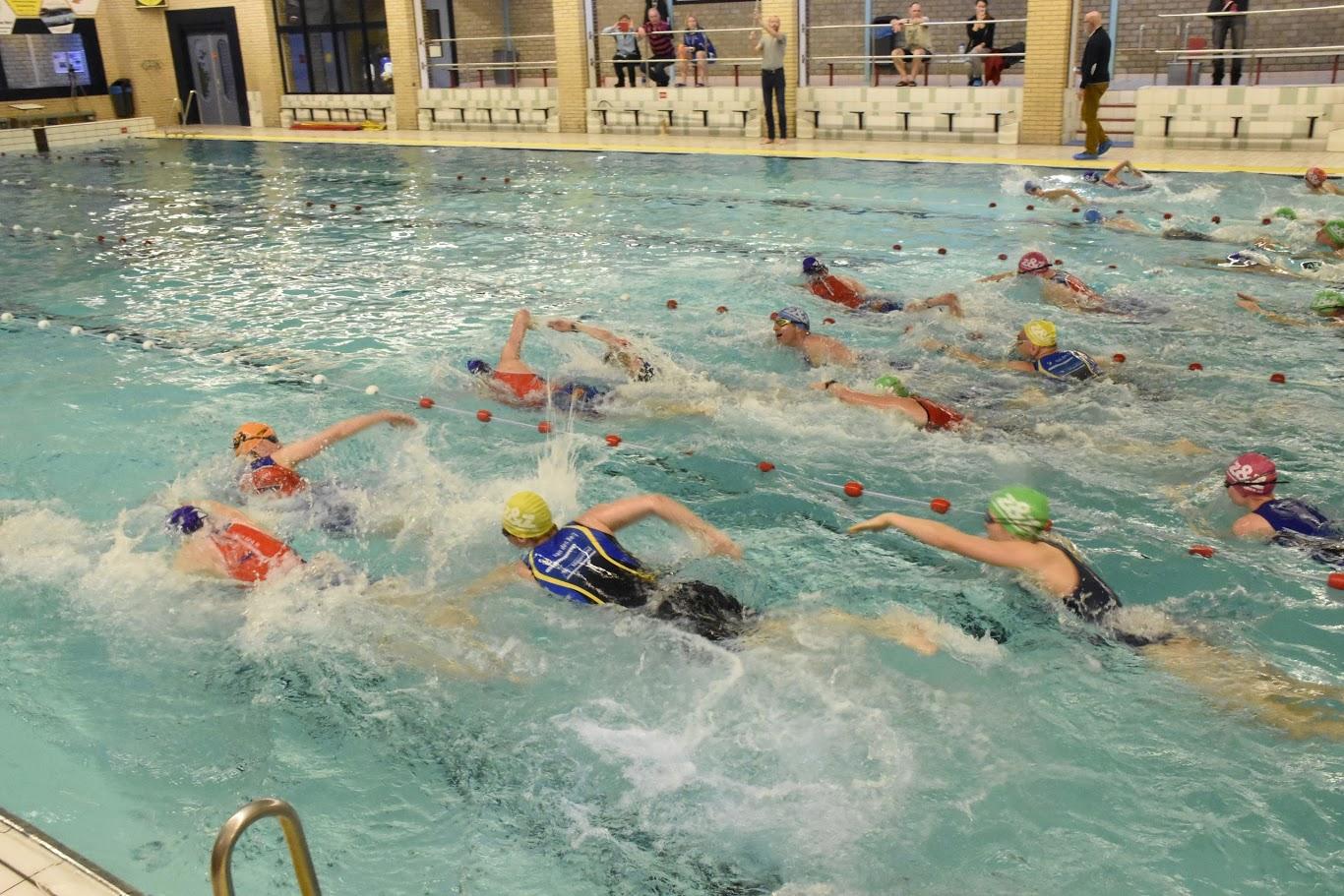 Bodegraven zwemloop
