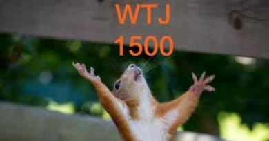 De 1500e is een sobere; terug in de tijd naar Almere 1983 met Conny van Diest  – WTJ 1500